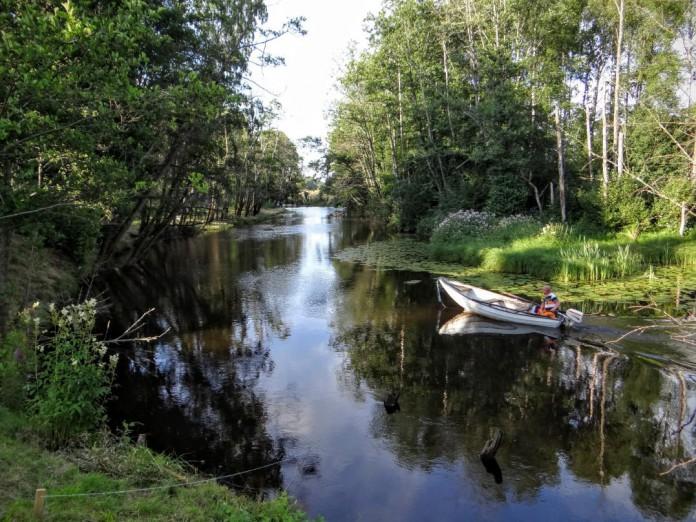 Kräftfiske i Svenljunga, Västergötland